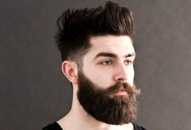style de barbe Garibaldi